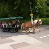 Or 1571 bij Schafbergbahn