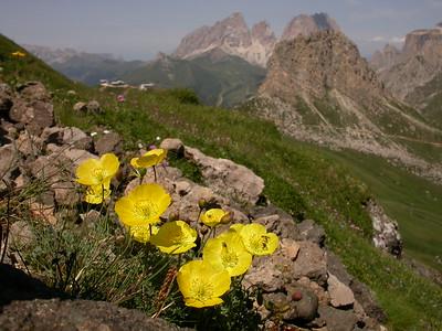 Italian Alps IV