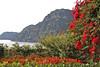 Colors framing the Amalfi Coast
