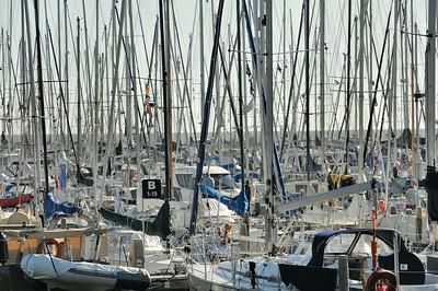 Enkhuizen - La forêt des bateaux au port