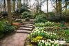 Garden Steps in Keukenhof Gardens