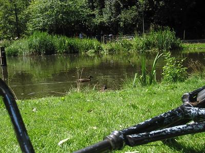 Bike on the Lake
