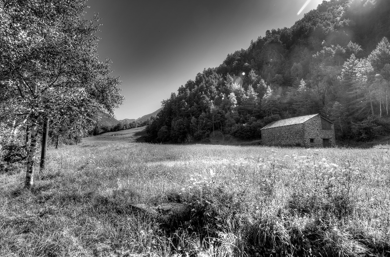 Nature shot of Andorra in B&W