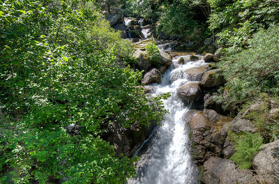 Flowing creek in the forest of Andorra