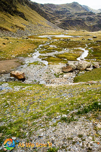 Uppor valley stream
