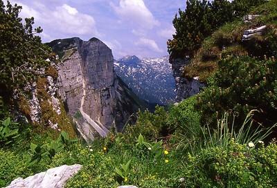 Austrian Alps670