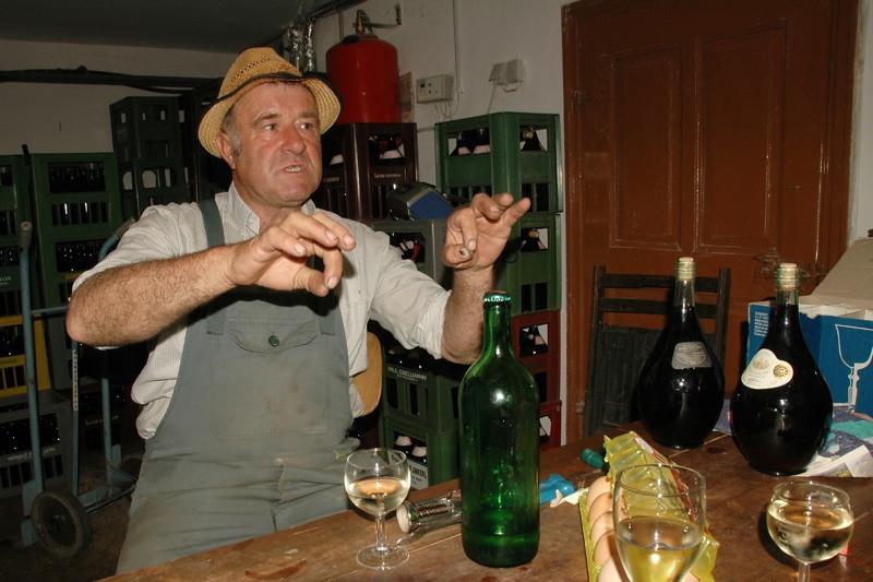 Talking about Wine - Pulkau, Austria