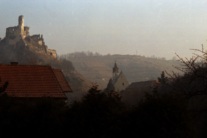 Rubbled Castle and Vineyards - Outside Vienna, Austria