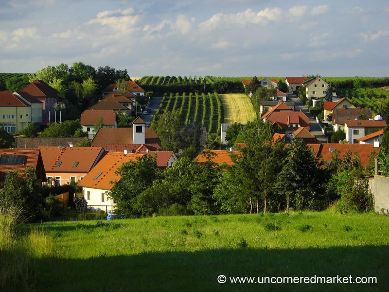 Vineyards in the Wine Quarter - Pulkau, Austria