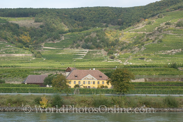 Danube - Winery & Vineyard