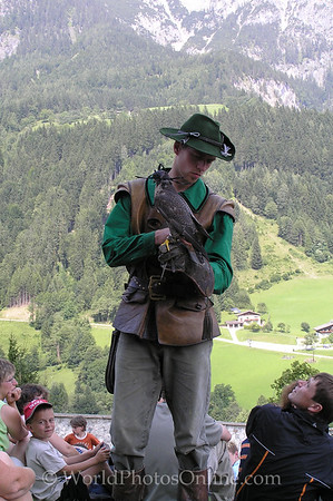 Outer Salzburg - Howenwerfen Castle - Falcon