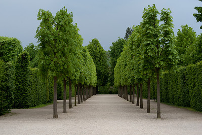 Beautiful landscape at the Schonbrunn Garden - Vienna, Austria