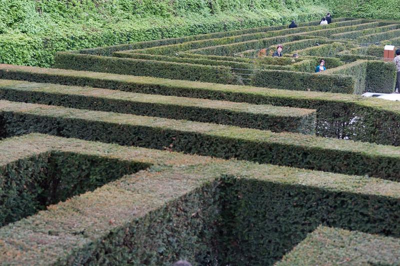 More shots from the hedge maze in Schonbrunn Garden - Vienna, Austria