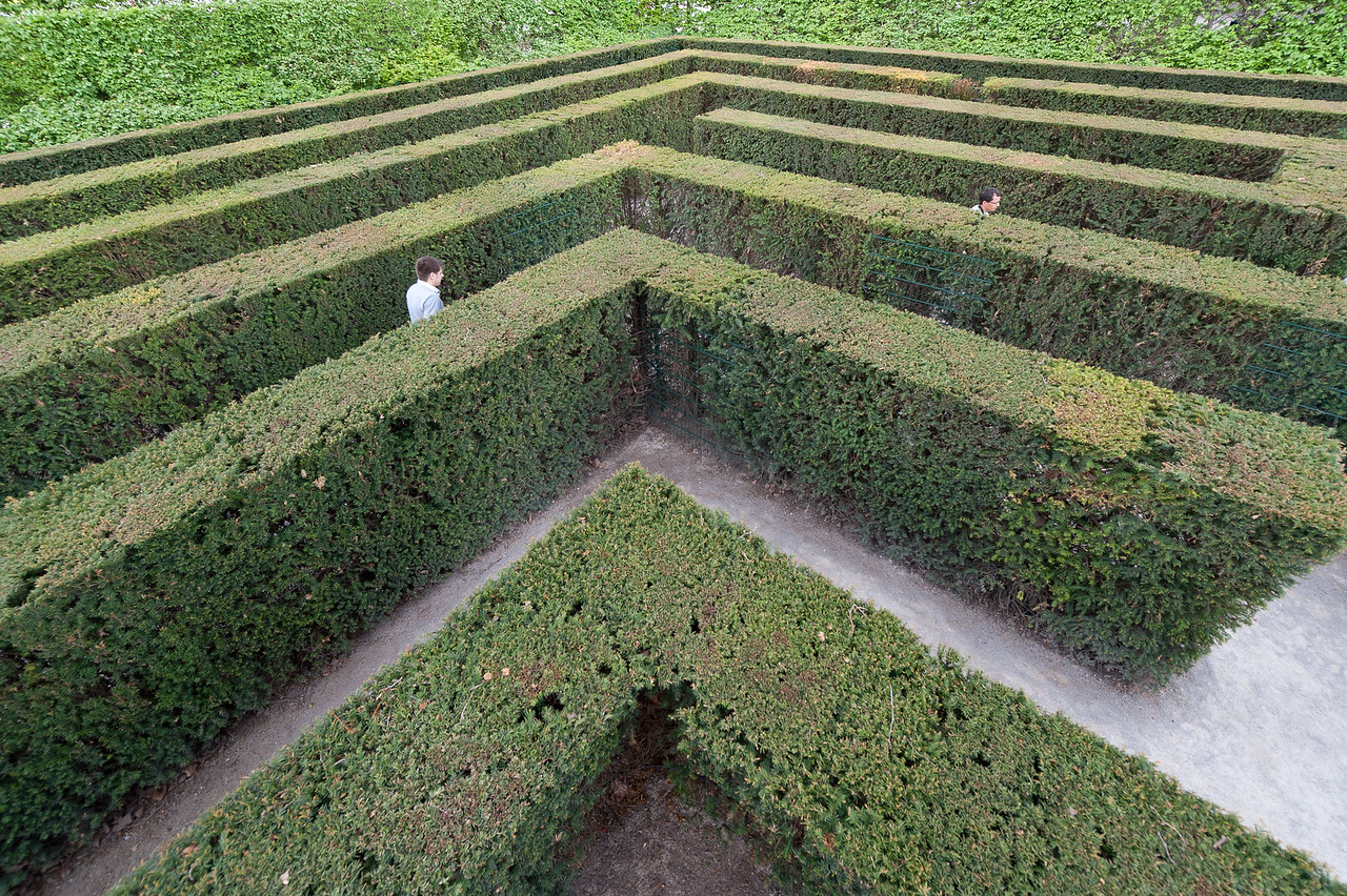 Hedge maze in the Schonbrunn Garden - Vienna, Austria