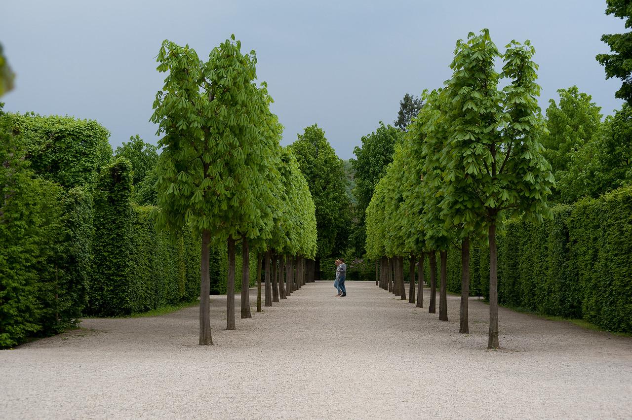 Couple walking at beautifully landscaped garden - Vienna, Austria