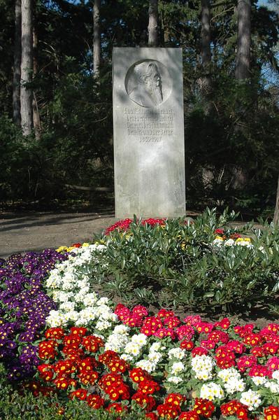 Türkenschanzpark in Spring
