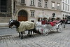Vienna - Horse & Buggy