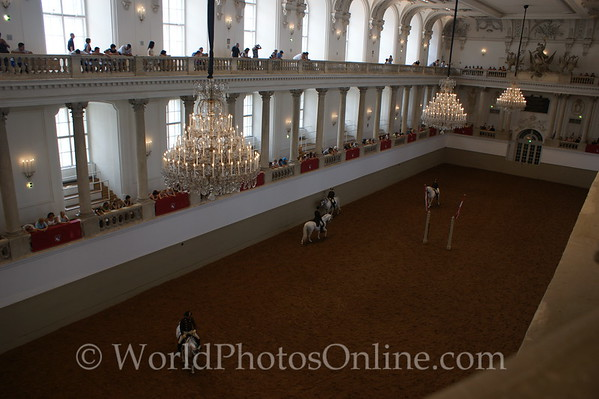 Vienna - Spanish Riding School - Lipizzaner Stallions