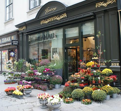 Vienna - Old Town Flower Shop