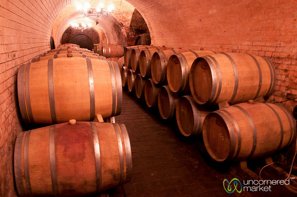 A Visit to the Wine Cellar at Weininger Winery - Vienna, Austria