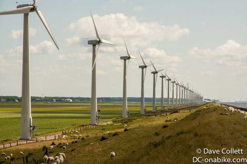 Lots of wind turbines!