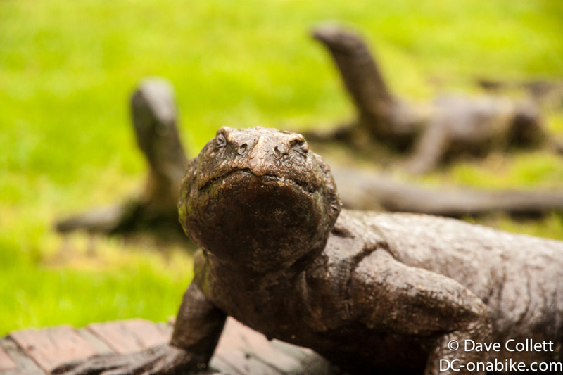 Lizard statues