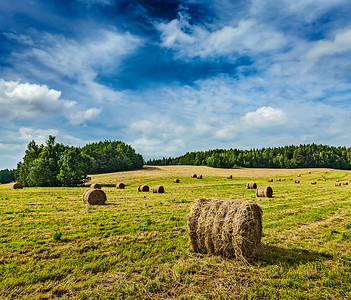 Hay bales on field