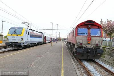 DE6302 (92-80-1266-034-8) & 1882 in Aalter, Belgium  02/05/15