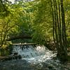 footbridge & swans Vrelo Bosne