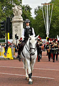 Mounted Police Officer on Crowd Control