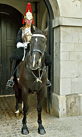 Trooper of the Blues and Royals