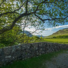 stone wall near Crummock Water