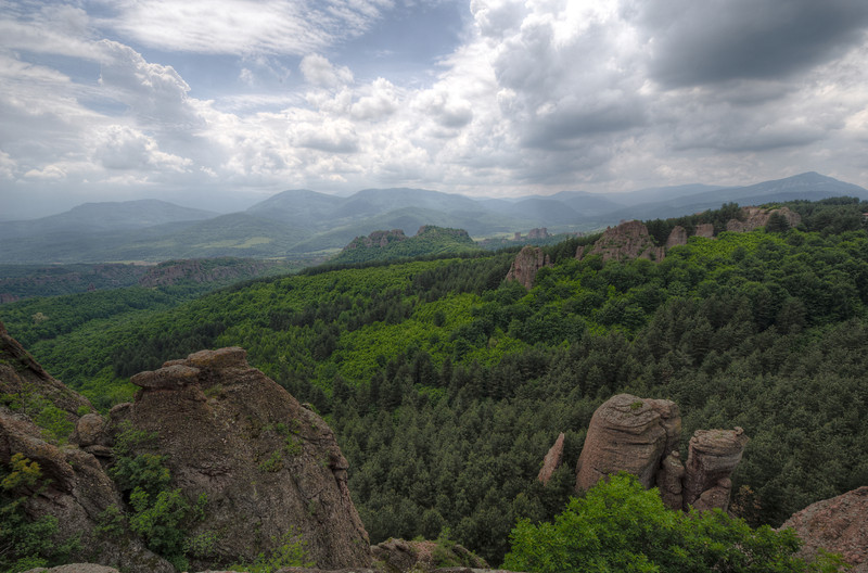 Overlooking view of forest canopy in Belogradchik, Bulgaria