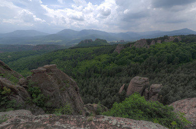Wide shot of forest canopy in Belogradchik, Bulgaria