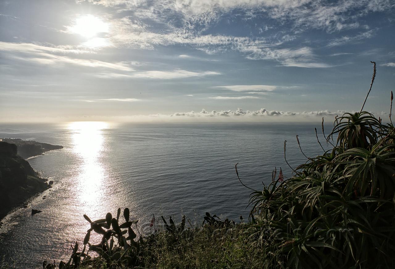Cliffs of Garajau Point, Madeira