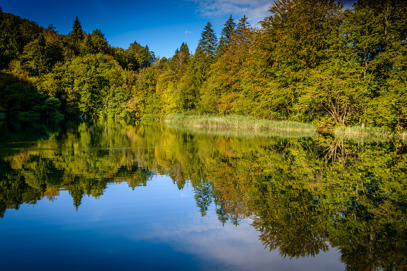 Morning Reflections - Plitvice Park