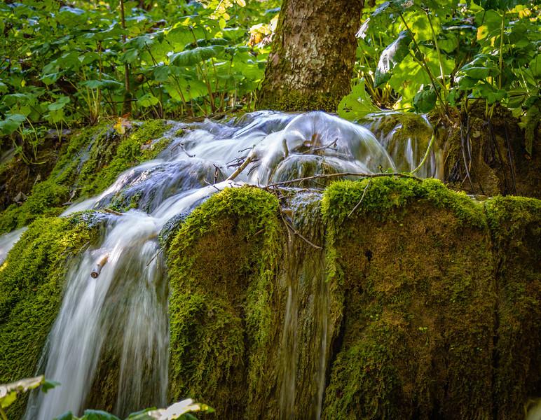 013_2013_Plitvice_Lakes_nat_park_-5135