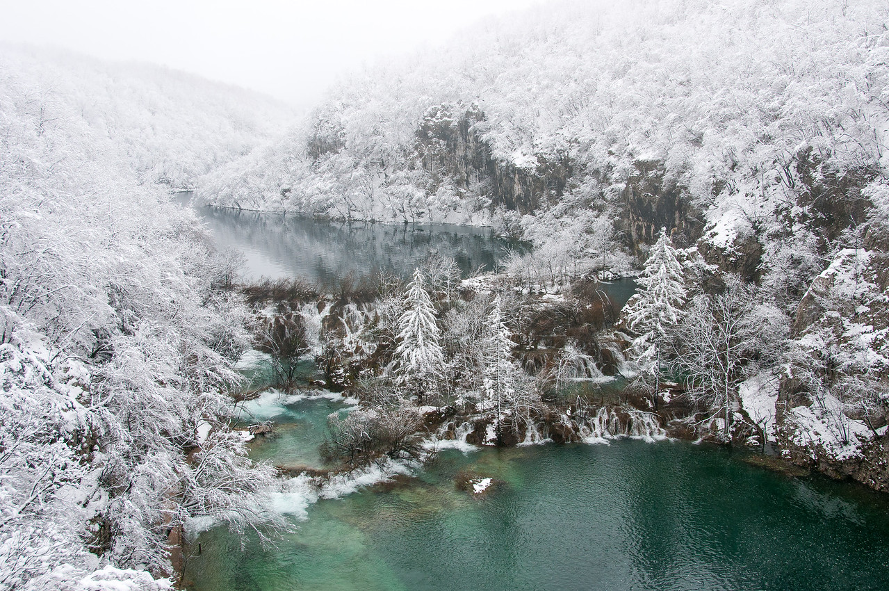 The lake and trees covered in snow - Plitvice National Park, Croatia