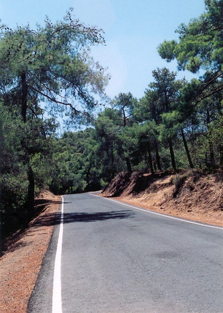 Road through Maheras forest