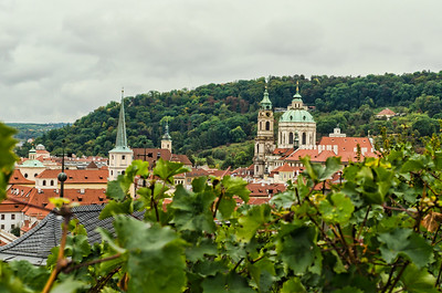 View from Prague Castle Vineyard