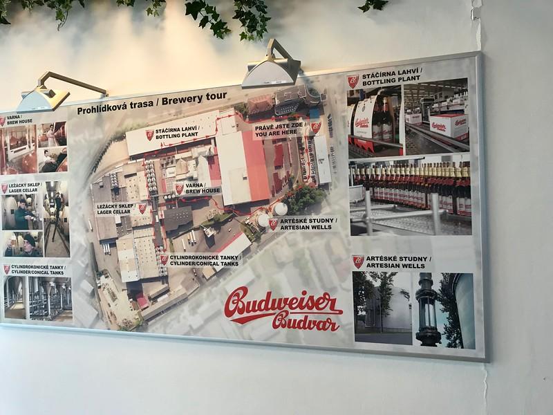 Budweiser Budvar Brewery Tour