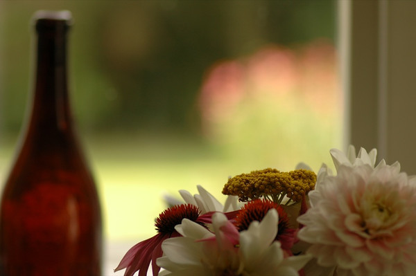 Flowers and Beer Bottle - Bohemia, Czech Republic