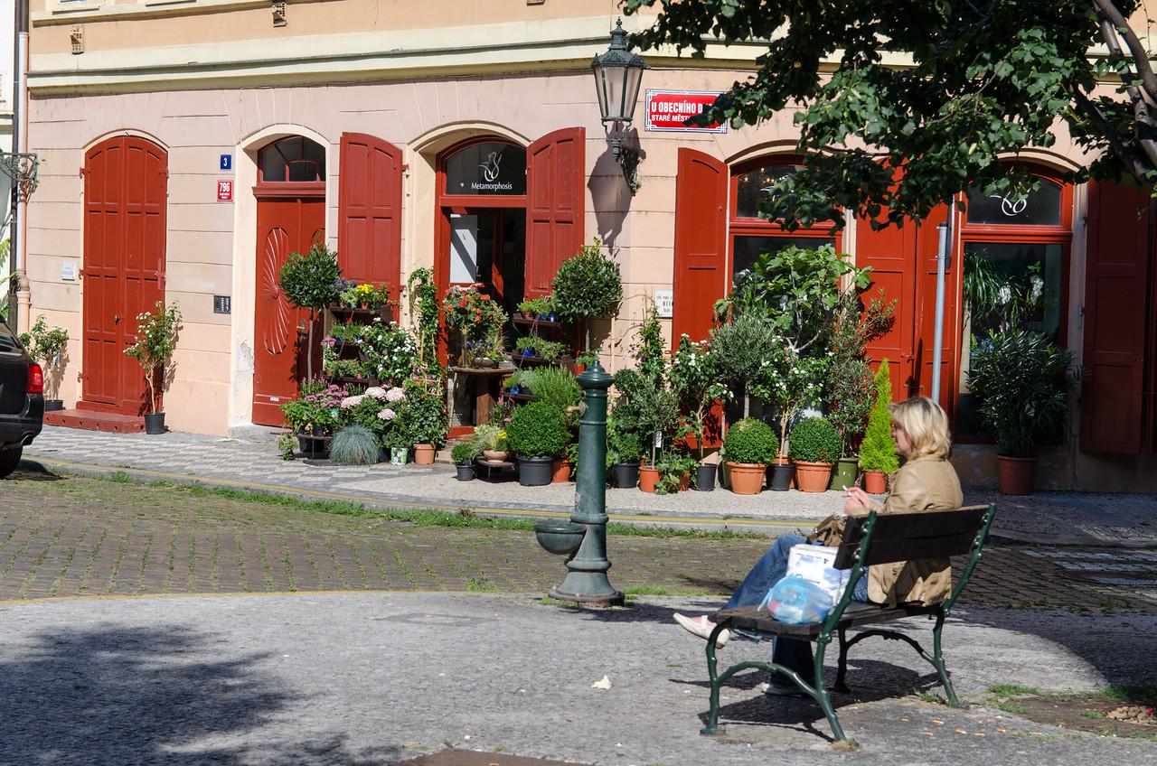 Plant shop, Jewish Quarter.