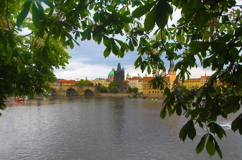 Viking River Cruise, Prague, View on Charles Bridge, Spring Blooms