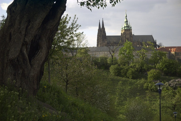 Prague Castle from Petrin Orchards - Czech Republic