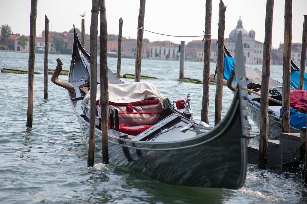 Day 12 - Venice