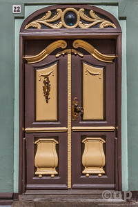 BROWN ORNATE DOOR