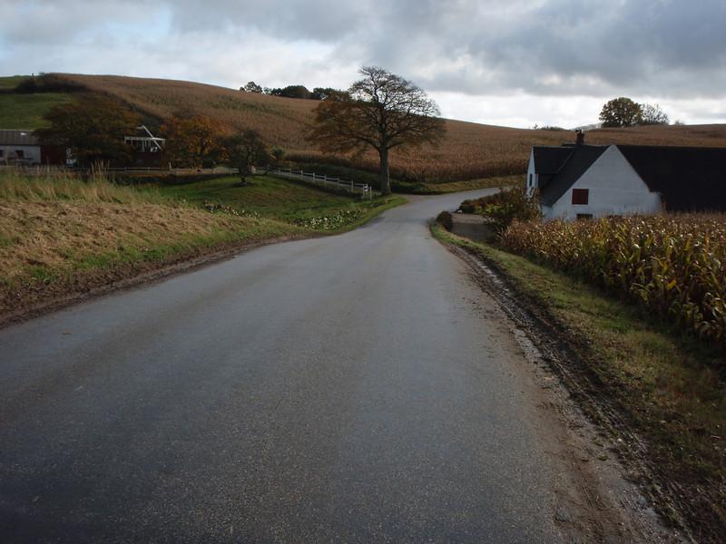 Fall Danish pastoral scenery