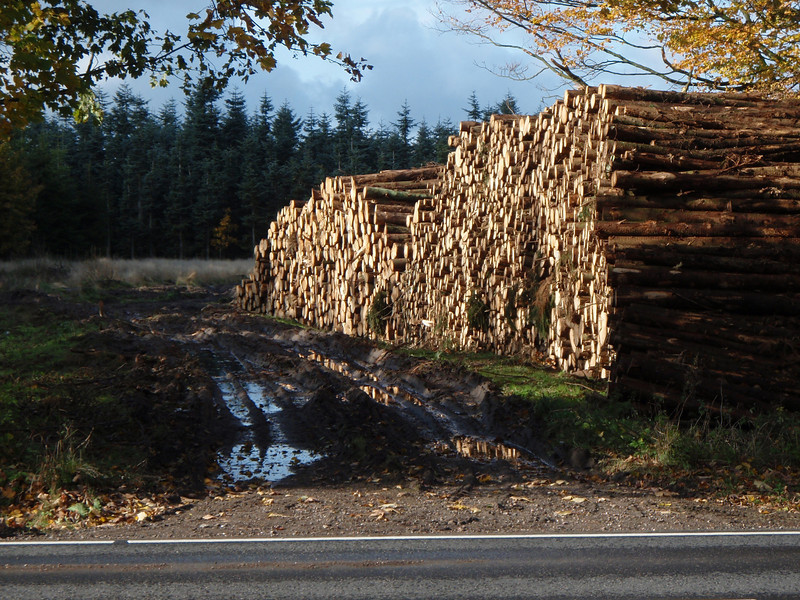 Danish Logs