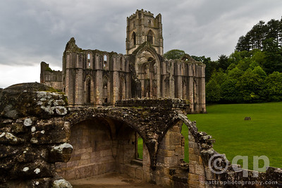 THE ABBEY FROM THE BACK